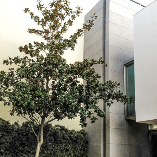 blat-tatay-arquitectos_arquitectura_architecture_proyecto_project_building_edificio_administrative_sagunto_07